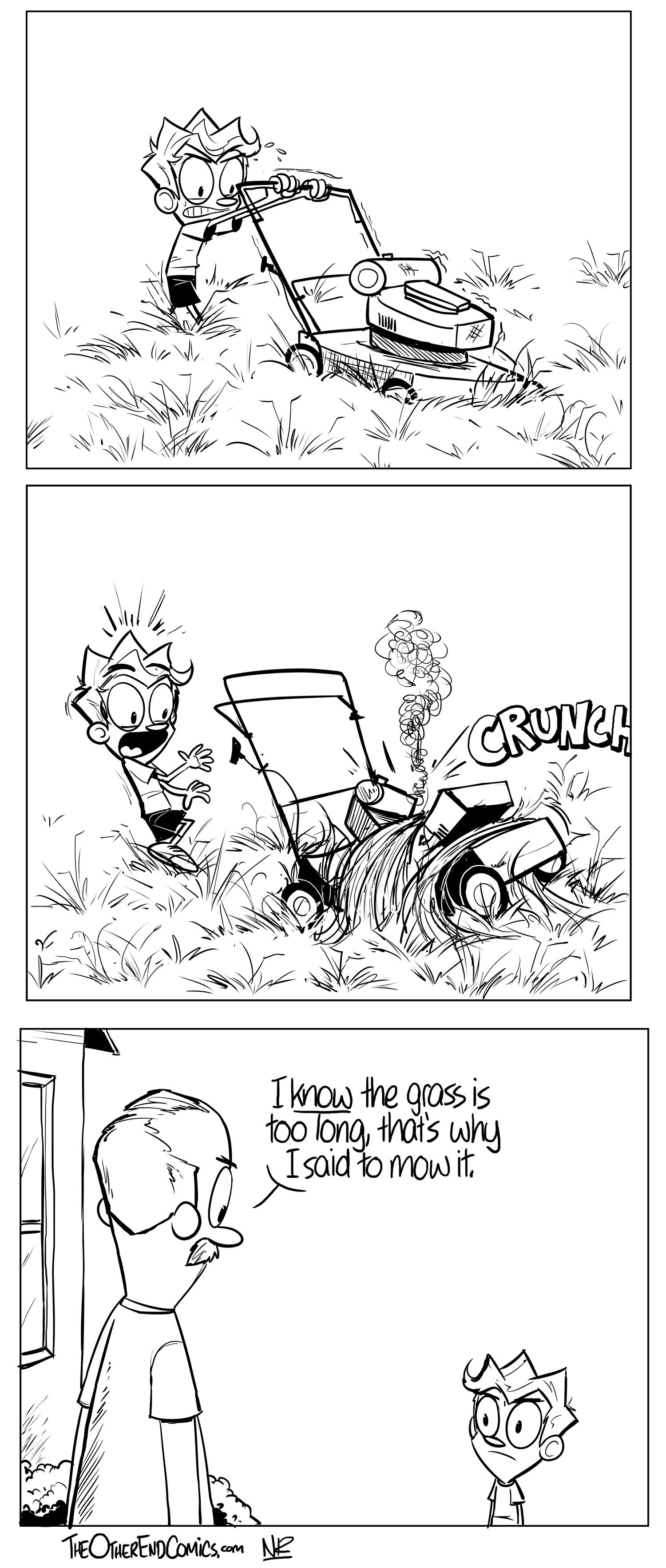 3-27 The Grass